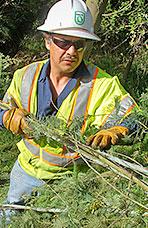 Miguel Alcazar, FMA,Davey Tree