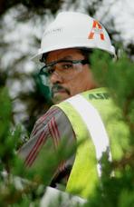 Miguel Tena, Foreman, Asplundh Tree