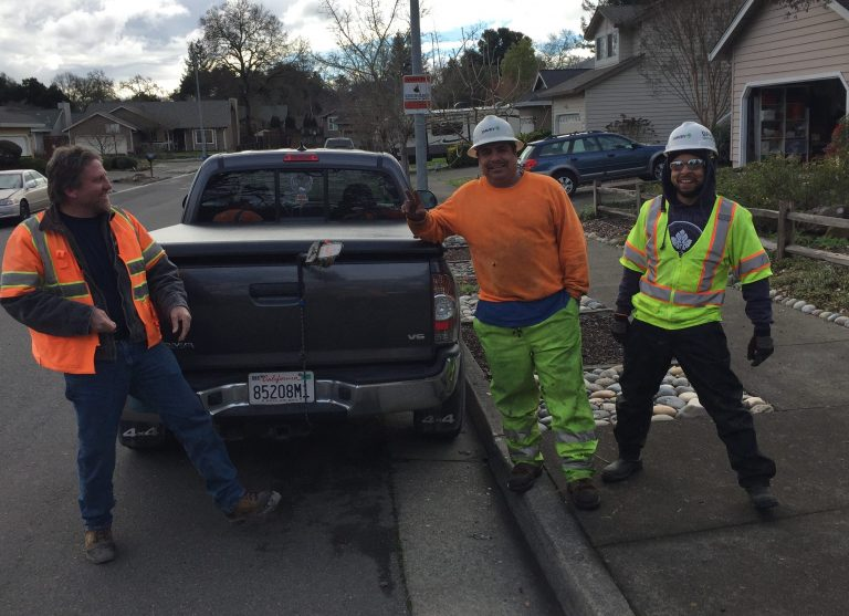 A crew of line clearance tree trimmers from Davey Tree worked with the Healdsburg line crew
